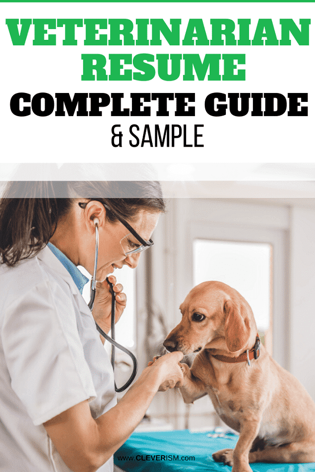 Veterinarian Resume: Sample and Complete Guide